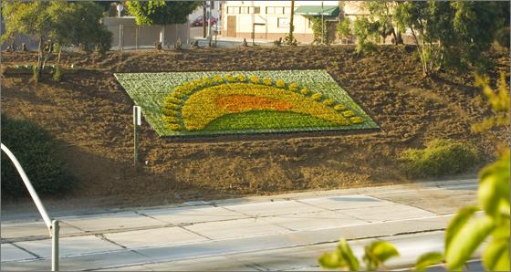 Prius flowerscale 1