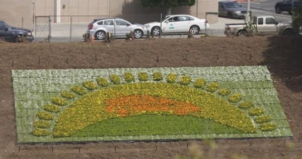 Prius flowerscale 2