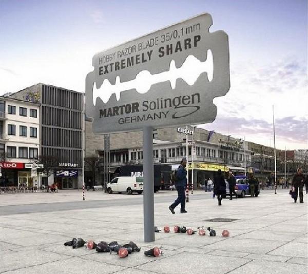 billboard outdoor venividi allemagne blade lame cutter pigeon meteorite meteor bird affichage alternatif XXL 1