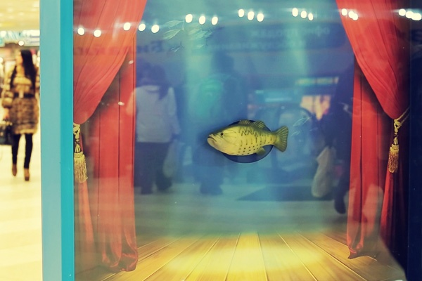 meridian poisson fish russie russe ambient marketing centre commercial sunrise 2